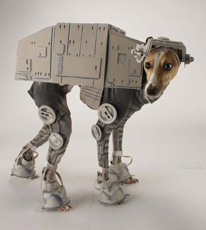 Costume Star Wars pour Chien