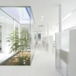 White Design par Hari Architects