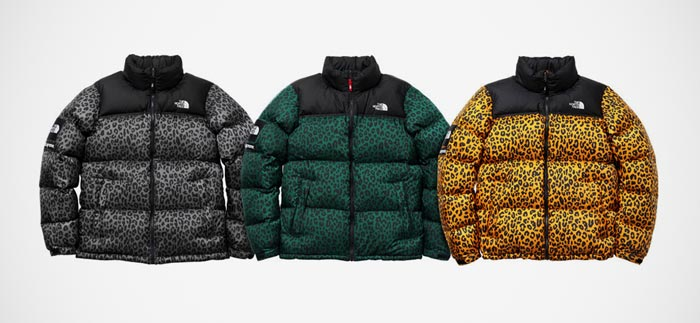 Doudounes Supreme x The North face