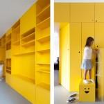 Appartement avec bibliotheque jaune