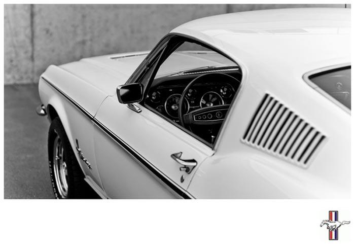Serie de photos Mustang Fastback par Laurent Nivalle