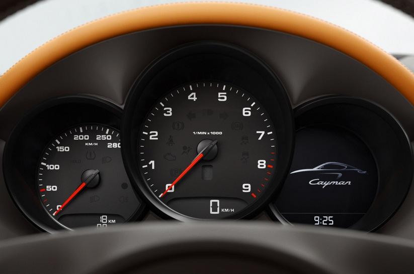 PorscheCayman2013-9