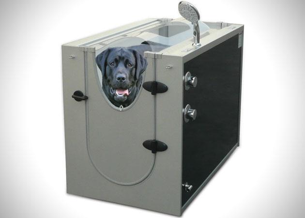 Douche pour chien