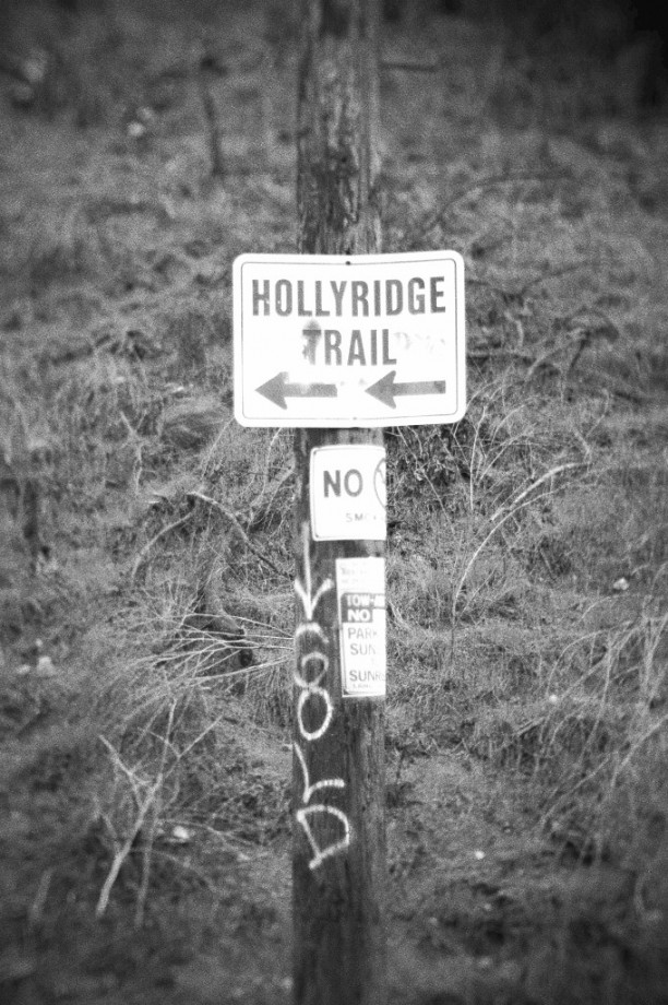 hollyridge-trail