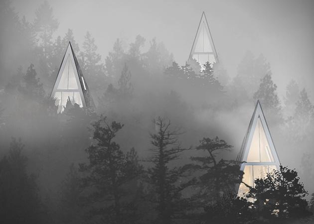cabane-design-arbre-02