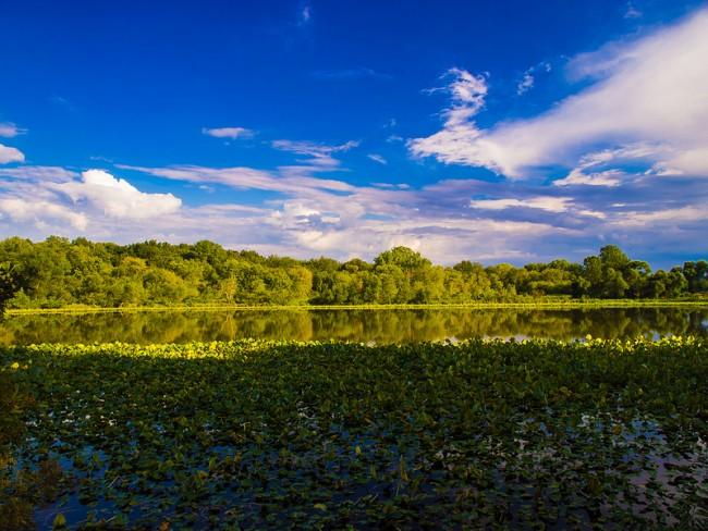Cub Lake - Indiana
