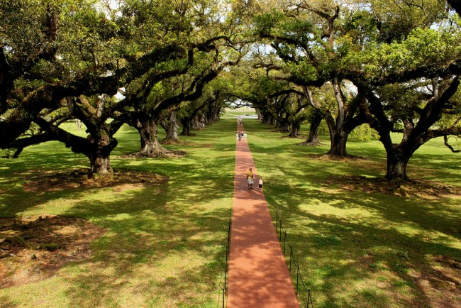 Oak Alley Plantation - Louisiane
