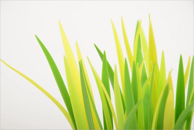 pot-fleur-design-07
