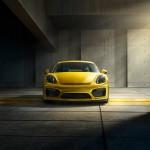 Calandre Porsche Cayman GT4