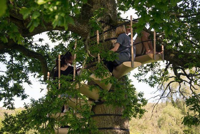 Installer un escalier autour d 39 un arbre en quelques minutes for Bordure autour d un arbre