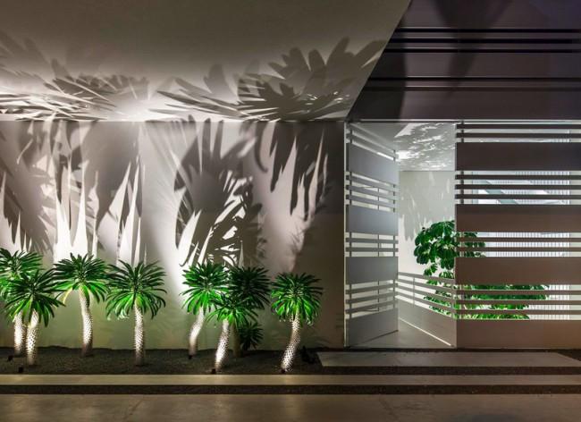 Aménagement exterieur palmiers