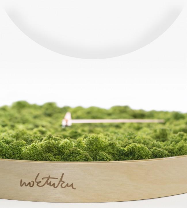 horloge lichen et bois