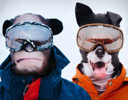 Faites ressortir l'animal qui est en vous sur les pistes de ski